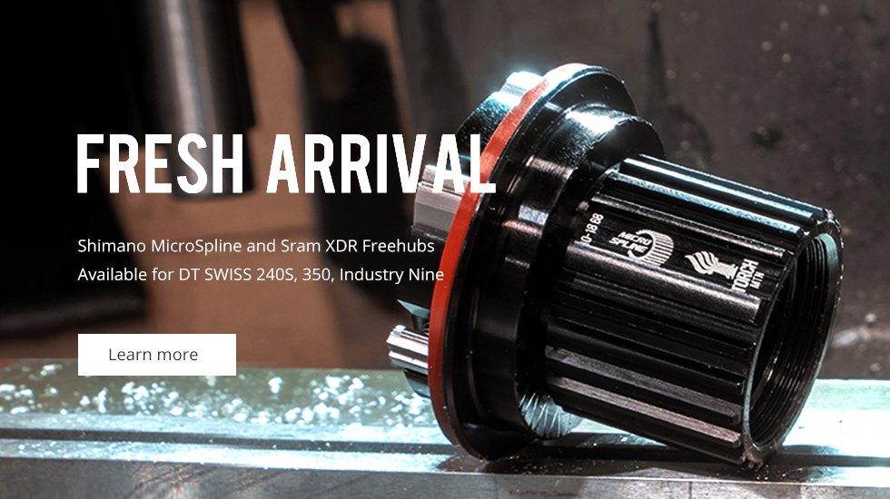 12-speed hubs with XTR XDR freedhub