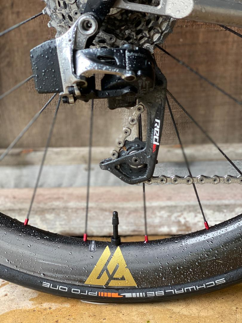 light-bicycle-wr50-paintless-carbon-rim-with-golden-valve-decal-red-spoke-nipples