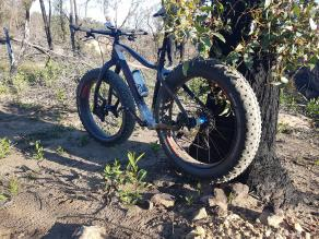 26er-FS680-on-diamant-fat-bike