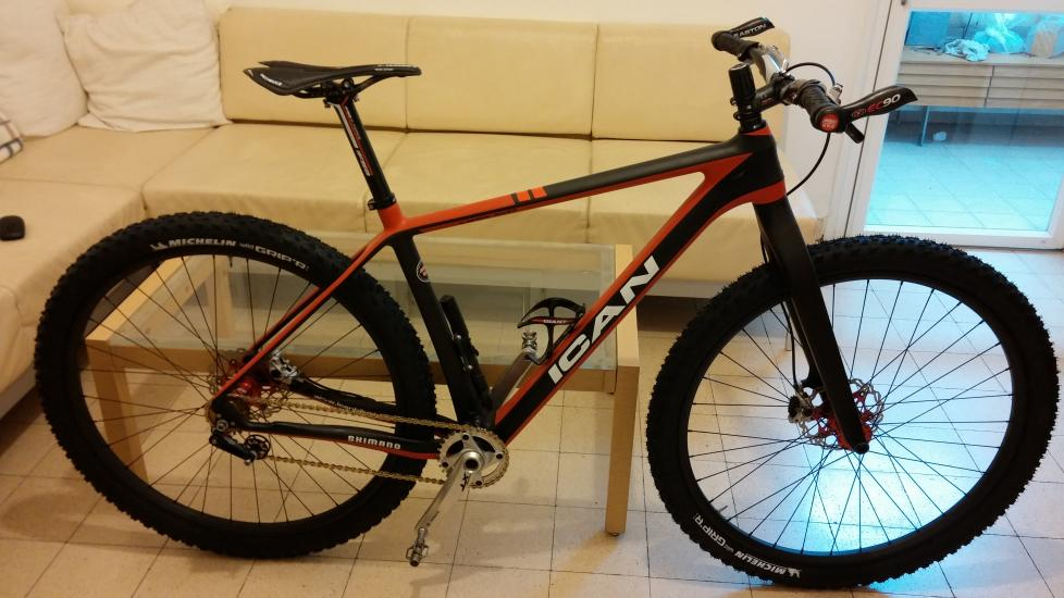 Single Speed 29 Mountain Bike